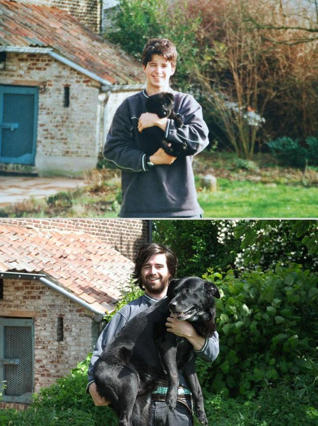 13 Photos avant/après d'animaux de compagnie 6