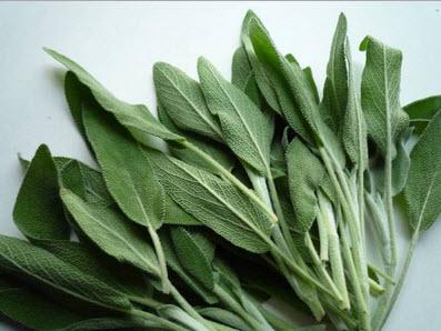 Cuisine sant les 6 herbes utiliser - Cuisine vivante pour une sante optimale ...