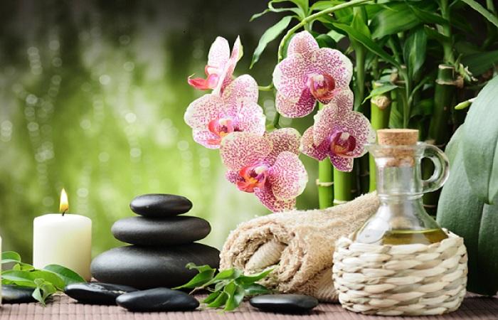 L huile de tea tree - L huile essentielle d arbre a the ...