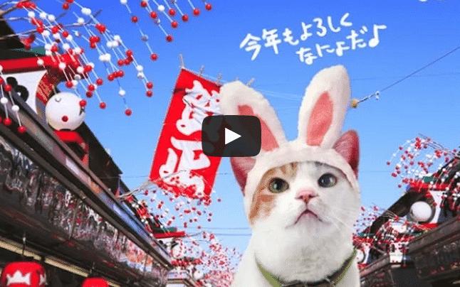 Les publicités japonaises les plus folles 7