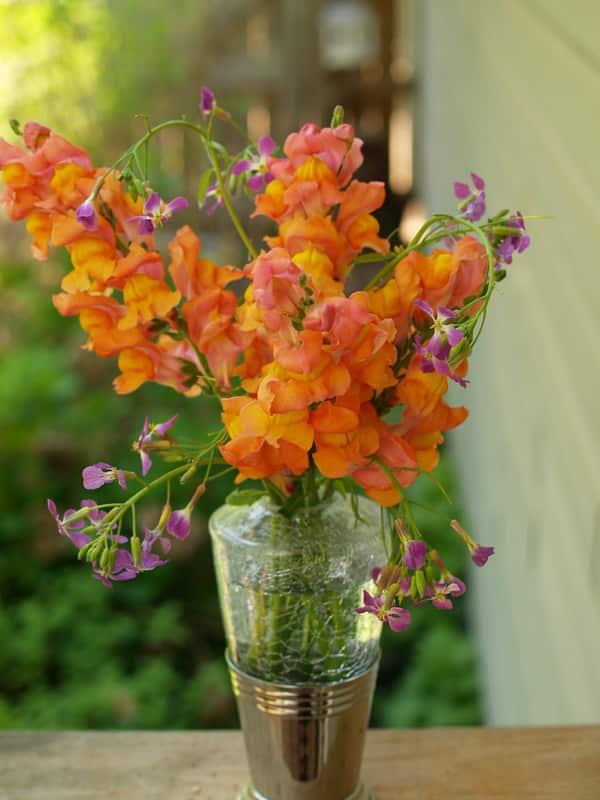 ce que vous devez faire pour conserver la fra cheur des fleurs coup es alimentation. Black Bedroom Furniture Sets. Home Design Ideas