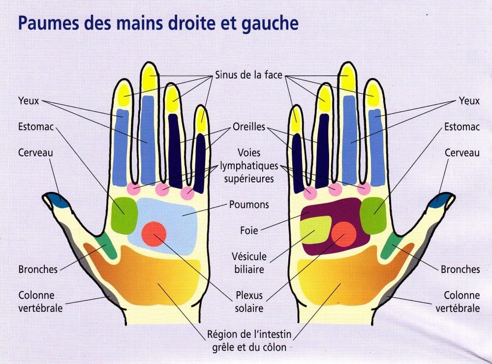 Appuyez sur ces points de votre main pour liminer la for Eliminer les vers des salades