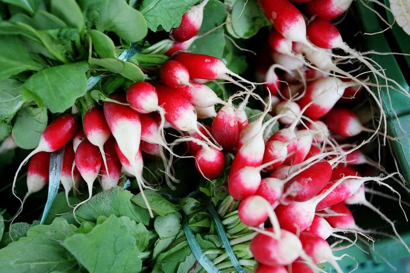 4 raisons pour manger des radis tous les jours