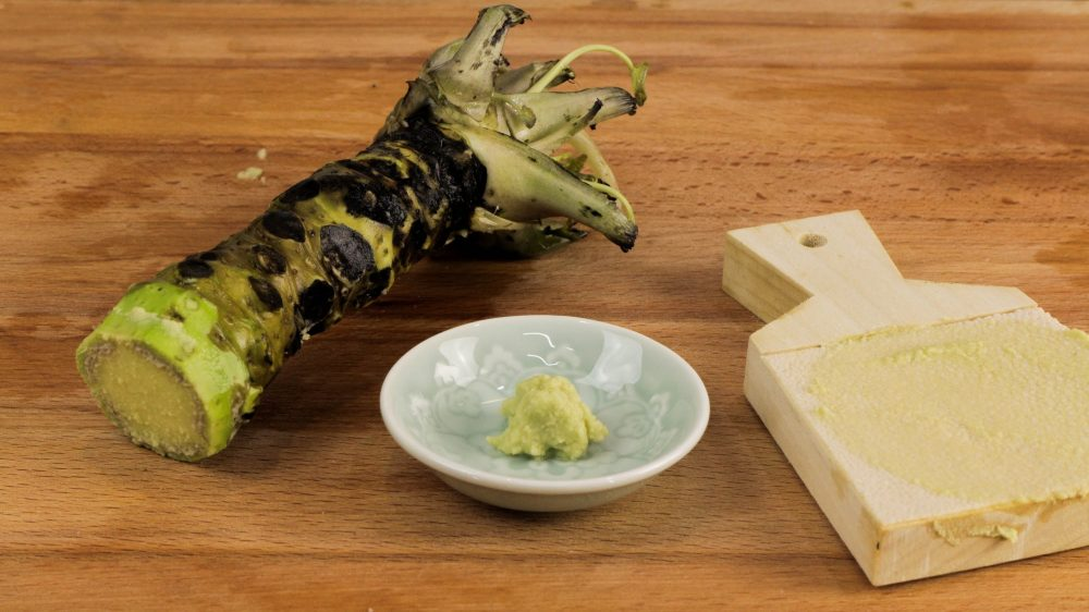 Ce qu 39 il faut savoir sur les propri t s sant du wasabi for Plante wasabi