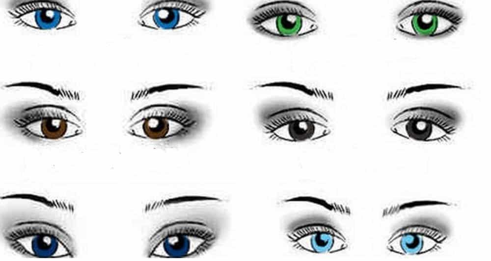 ce que la forme de vos yeux r v le sur votre personnalit. Black Bedroom Furniture Sets. Home Design Ideas