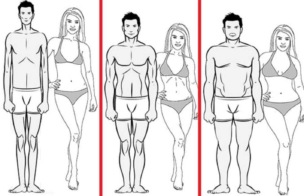 Source : https://runlikeagirl311.wordpress.com/2015/08/04/why-your-body-type-matters-ectomorph-endomorph-mesomorph/