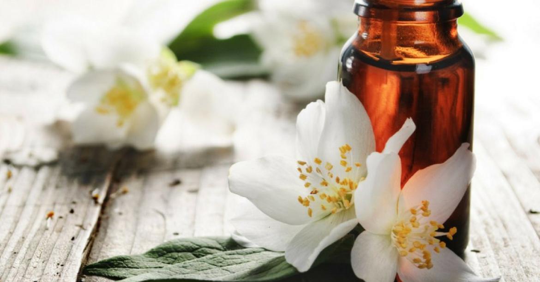 Les bienfaits de l'huile de jasmin sur la peau 11