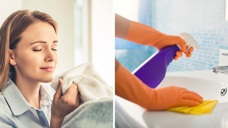 5 avantages de nettoyer votre maison avec une huile essentielle au lieu des produits de nettoyage 9